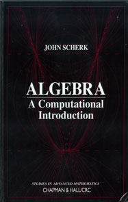 Algebra: A Computational Introduction
