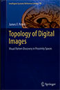 Topology of Digital Images, Visual Pattern Discovery in Proximity Spaces