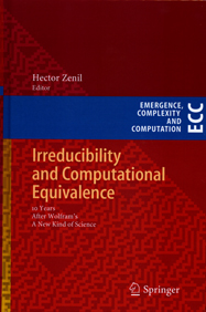 Irreducibility and Computational Equivalence, 10 Years After Wolfram's A New Kind of Science